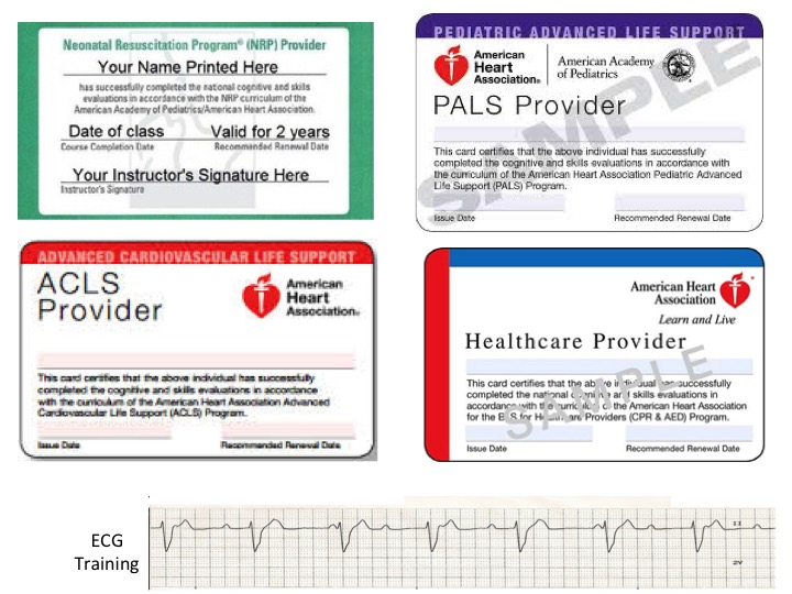 Acls Bls Certification American Heart Association Image collections ...